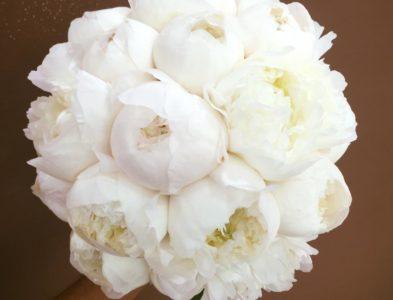 Total white