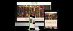 Idea Verde nicola iodice realizzazione siti web napoli